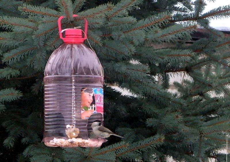 Изготовления поделки из пластиковых бутылок