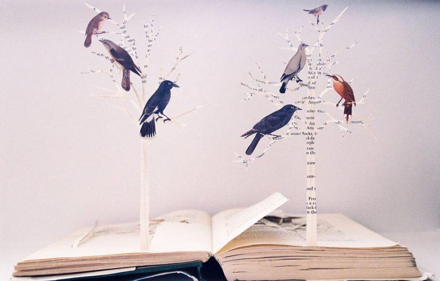 Из книг можно сделать все, что угодно. Это зависит от фантазии и количества изданий