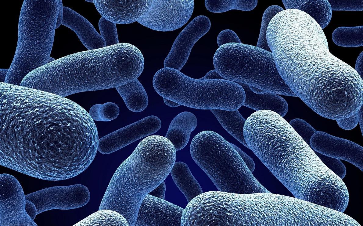 Сушка со специальной ультрафиолетовой обработкой эффективно убивает бактерии, вызывающие неприятный запах