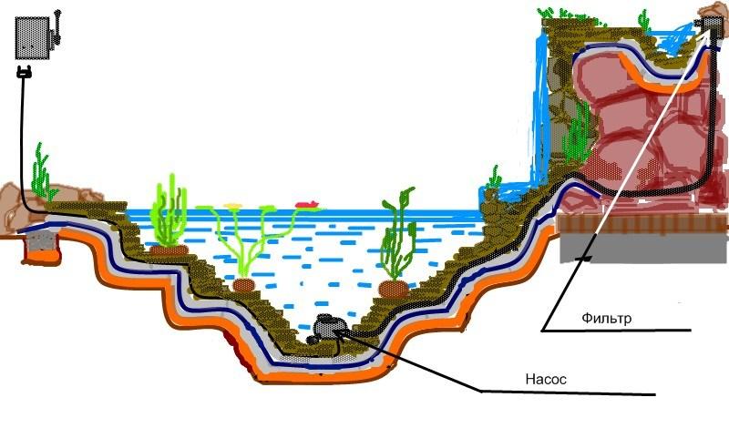 Схема водоема для рыб