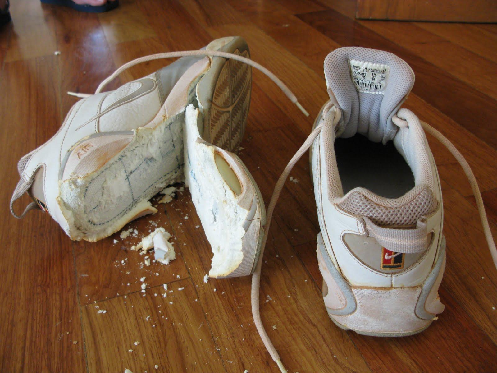 Стоит всегда помнить о том, что существует опасность, что во время стирки кросовки могут просто-напросто расклеиться