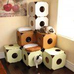 Фото 27: Лабиринт из картонных коробок для кошек