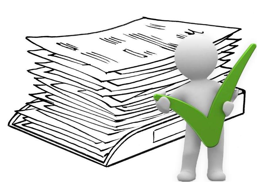 Проверка документов на получение субсидии государственным органом