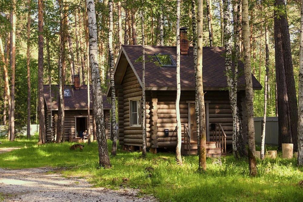 Аренда домика в лесу