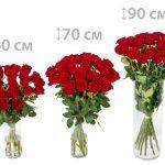 Фото 41: Длина роз