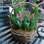Фото 79: Корзинка с тюльпанами на 8 Марта