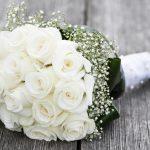 Фото 42: Белые розы