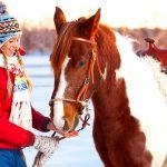 Фото 56: Отдых на лошадях