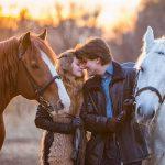 Фото 58: Пара лошадей