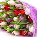Фото 23: цветы на 8 марта1