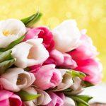 Фото 24: цветы на 8 марта1
