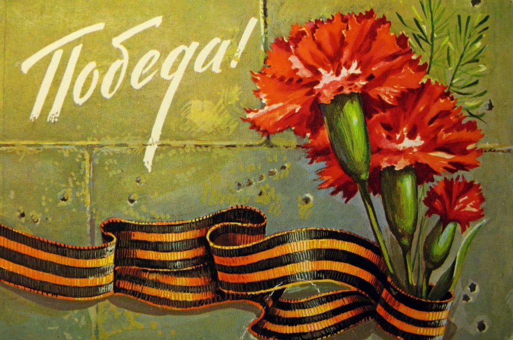 Цветы гвоздики ко Дню Защитника Отечества