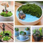 Фото 57: Сад в чашке