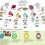 Фото 34: Натуральные красители для яиц