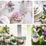 Фото 57: Цветы в яичной скорлупе