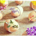 Фото 98: Украшение веточками цветов яиц