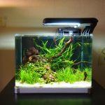 Фото 9: Квадратный аквариум