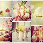 Фото 60: Живые цветы в яичной скорлупе