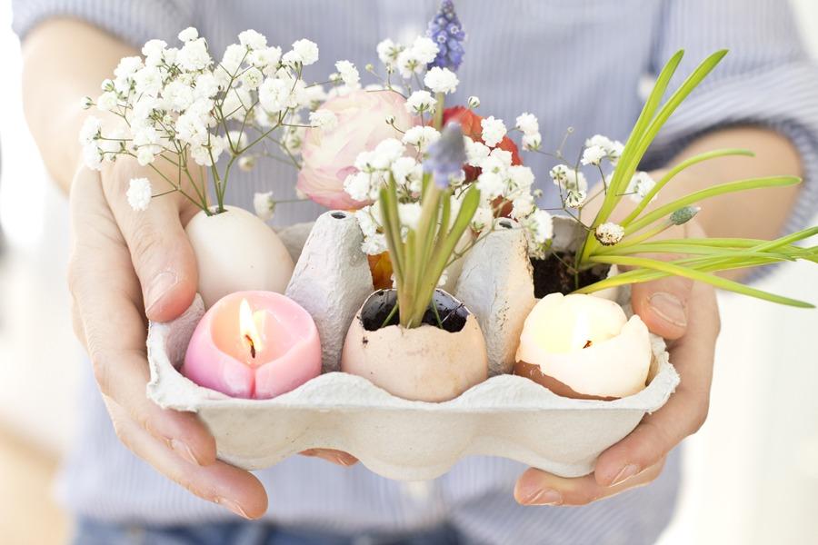 Пасхальные цветы в яичной скорлупе