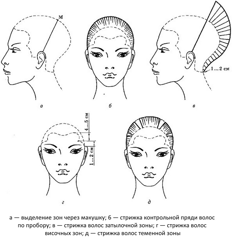 Схема стрижки гарсон