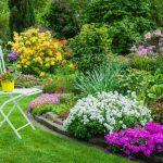 Фото 9: Красивые цветники на даче