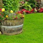 Фото 24: Оформление дачи цветниками