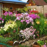 Фото 56: Цветник на даче