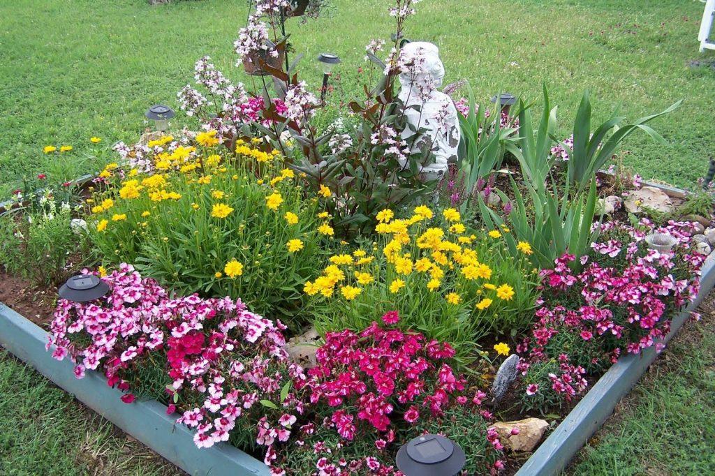Заполнение цветника различными растениями