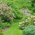 Фото 34: Цветущий сад