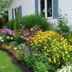 Фото 53: Цветник оформленный вдоль дома