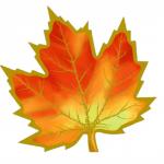 Фото 7: листочек кленовый