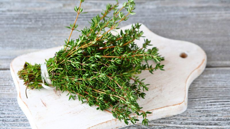 Трава помогает при тяжелых заболеваниях