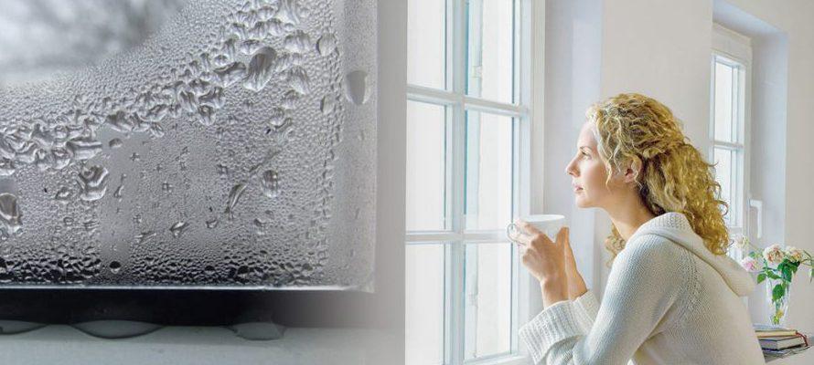 Копденсант на окнах