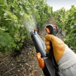 Фото 34: Опрыскивание винограда