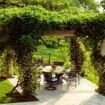 Фото 3: Беседка с растениями