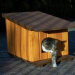 Фото 69: Будки для кошки