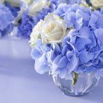 Фото 61: Цветы гортензии синий